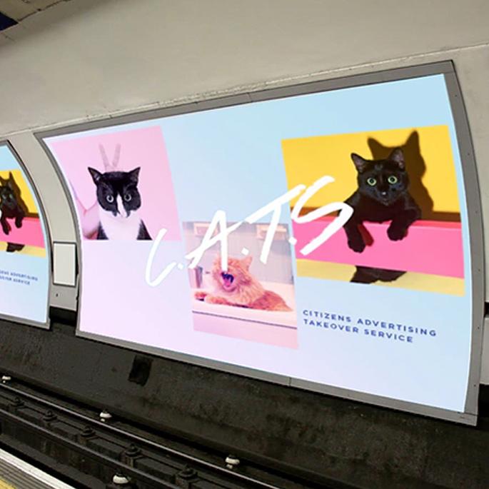 지하철 광고보다 길 잃은 고양이 사진