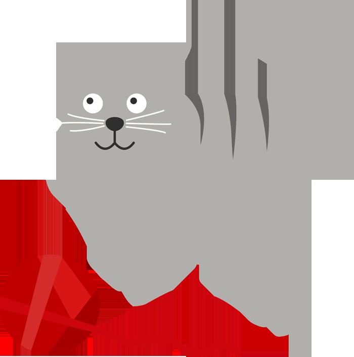 당신이 고양이와 주기적으로 놀아줘야하는 이유 3 가지