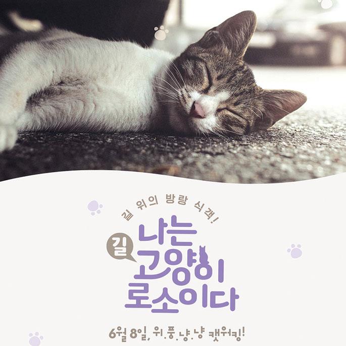 '나는 고양이로소이다', 6월 8일 개봉 확정