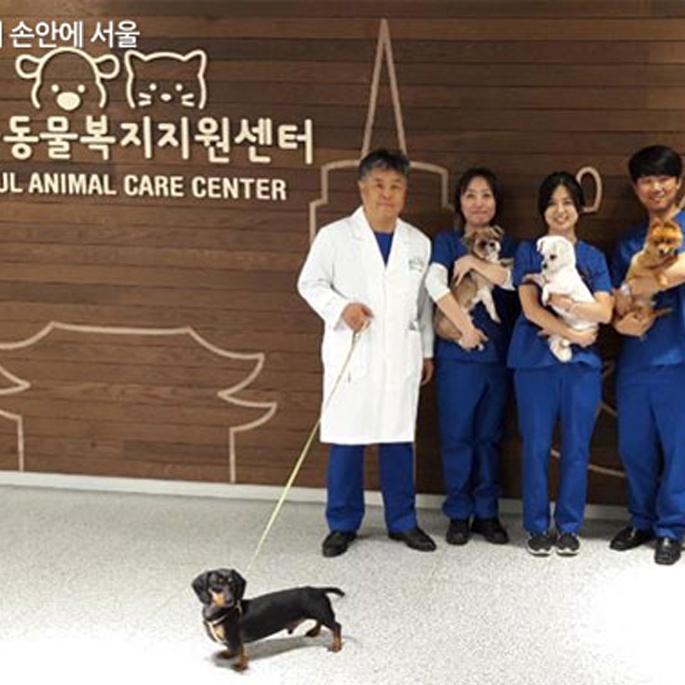 치료부터 입양·교육까지, 동물복지지원센터 개원