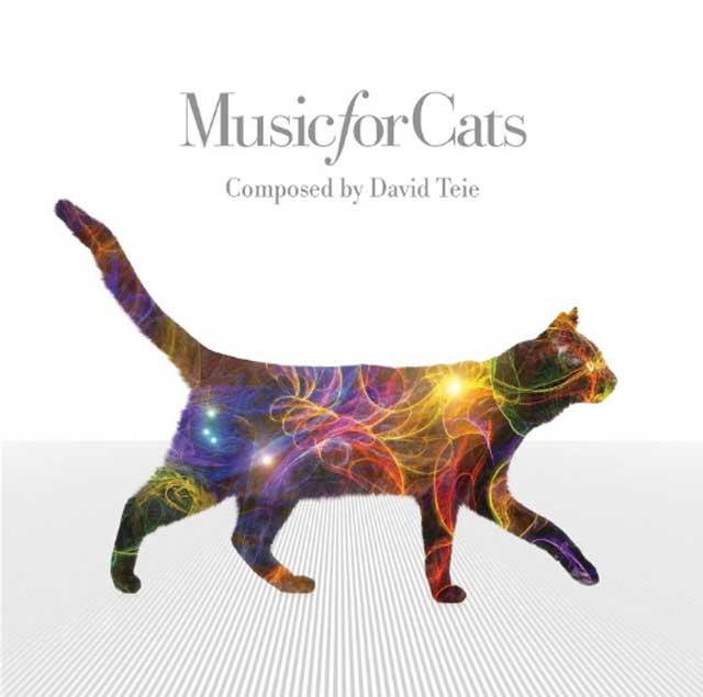 진짜 냥들이 좋아함,  음악가와 심리학자가 만든 고양이 음악