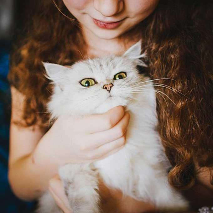 '평소와 다르다'고 느꼈을 하는, 고양이 건강 체크 포인트