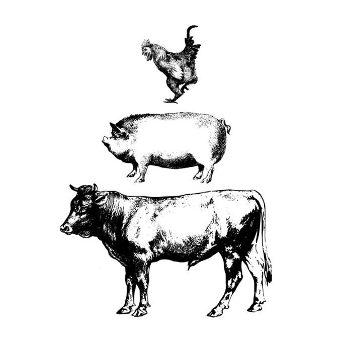 농장동물 없는 미래는 가능할까?