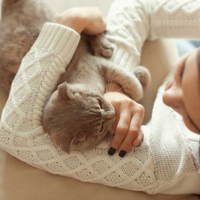 고양이를 실제 키워보니…,  편견과 다른 의외의 것 7