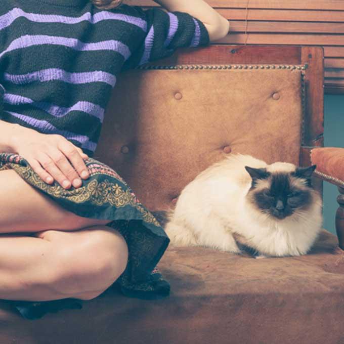 고양이를 '정말 잘' 키우는 사람 특징 4