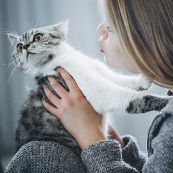 이러면 개냥이도 버둥댄다, 고양이가 극혐하는 포옹법 3