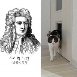 """""""펫도어를 뉴턴이 발명했다니!"""" 고양이한테서 영감 얻은 발명품 5"""