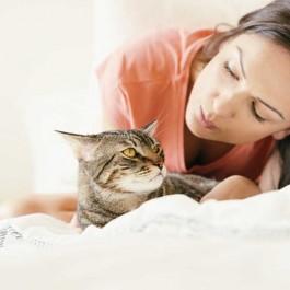 고양이와 애정 관계에 있어도 '거리감'을 둬야 하는 상황 6