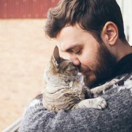 집사가 고양이에게 사랑을 전하는 방법 5