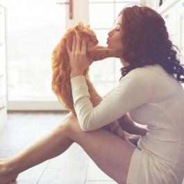 집사가 사랑하는 고양이에게 마음 상하는 순간 5