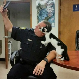 경찰관에게 셀카 잘 찍어줘서 새가족 찾은 길고양이