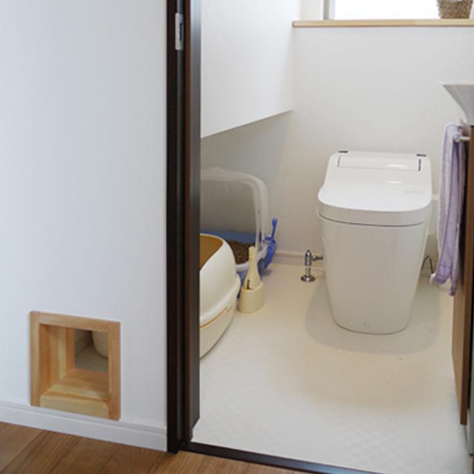 고양이와 화장실을 공유하다