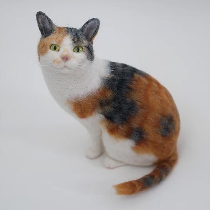 한 번 보면 눈을 뗄 수 없는 고양이