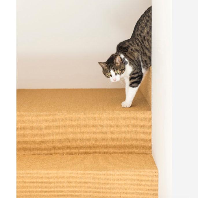바닥재가 사이잘삼 스크래처! 복 많은 고양이가 사는 집
