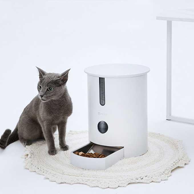 고양이 건강 바로미터는 밥량, 페토이 반려동물 자동급식기 HT-P006X 출시