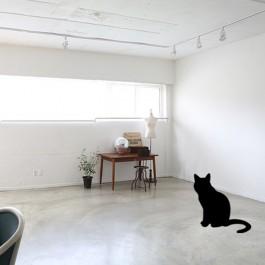 """개방형 집, """"고양이에게 좋지 않아"""""""