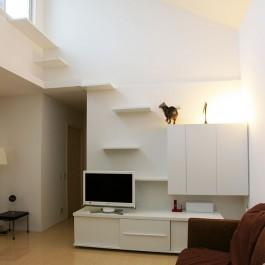 고양이와 개, 그리고 사람 모두를 위한 거실