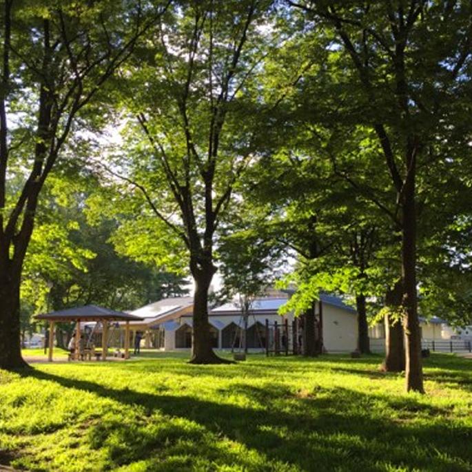 사람과 유기 동물이 함께하는 공원 속 쉼터 '교토동물애호센터'