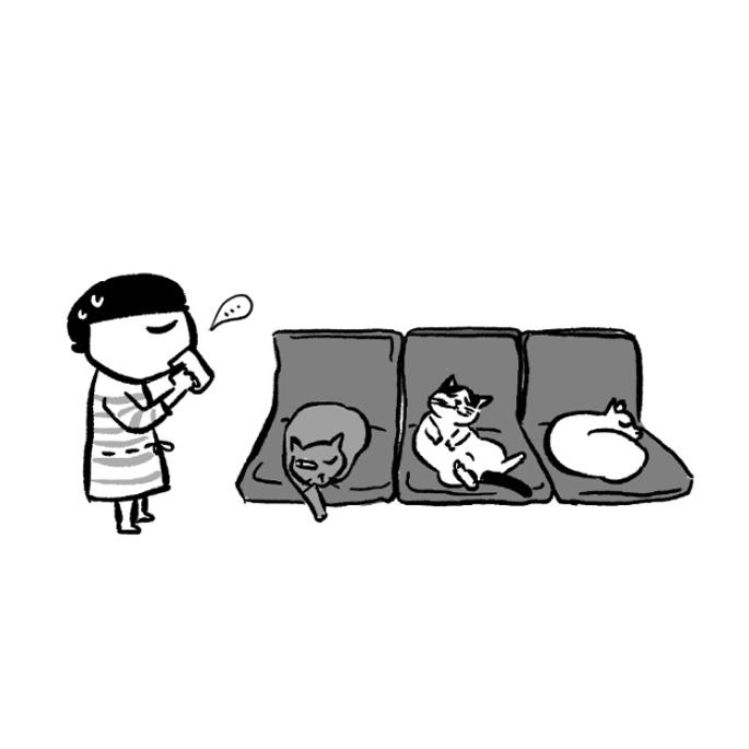 고양이사전. 제12화 의자