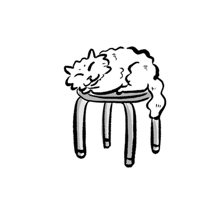 고양이사전. 제13화 자리