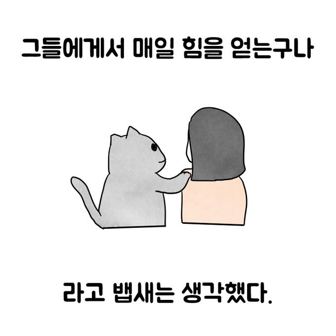 연희동 출장집사. 제19화 고양이 덕분에 시작