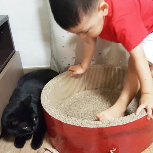 귀요미 조카의 고양이사랑