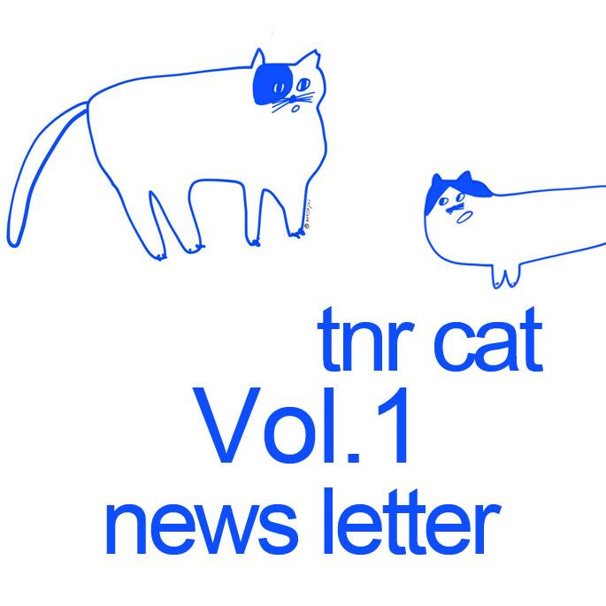 캣랩, 제2회 TNR CAT 캠페인 진행