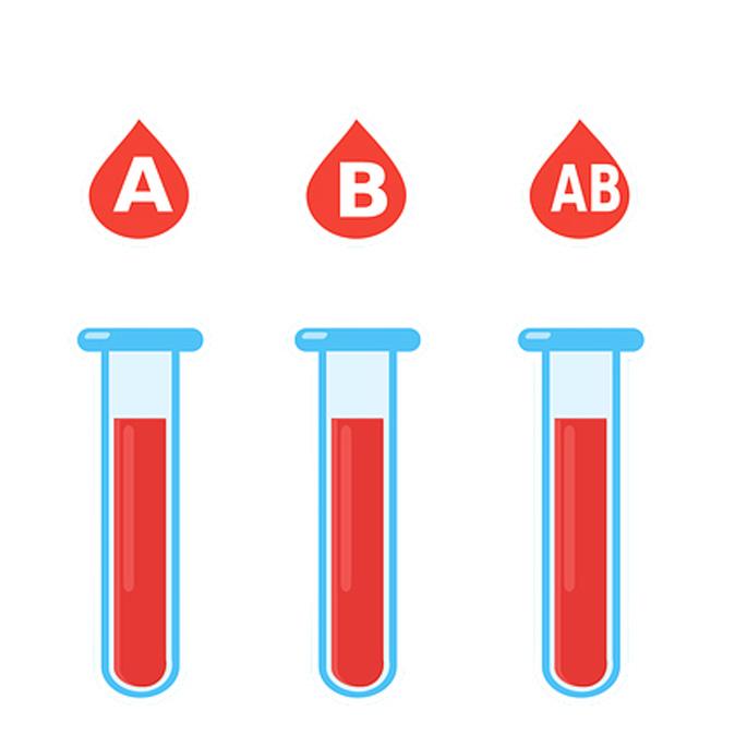 Q. 고양이에게 가장 드문 혈액형은?