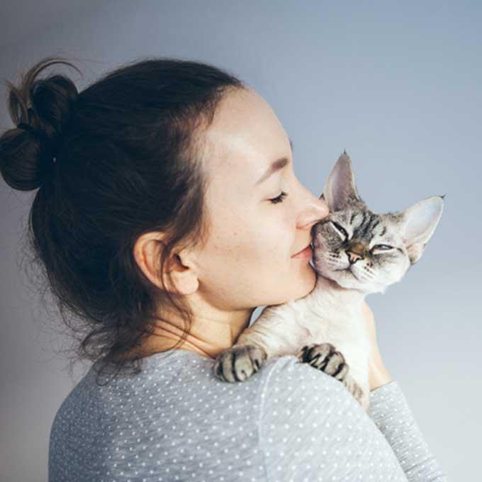 Q. 고양이 몸에서 햇빛냄새 혹은  곰인형 냄새가 나는 이유 4