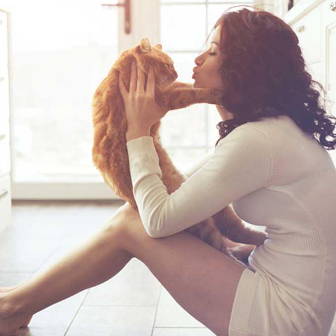 Q. 고양이가 갑자기 집사에게 냉랭해지는 이유 7
