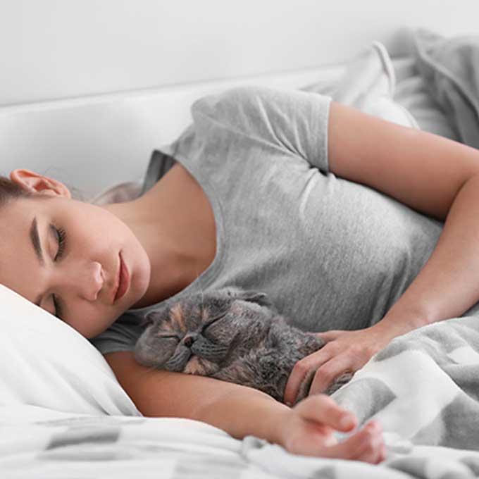 Q. 고양이가 집사 팔이나 겨드랑이에서 잘 때 마음 4