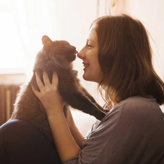 Q. 고양이가 핥아주는 집사 신체 부위에 따른 의미