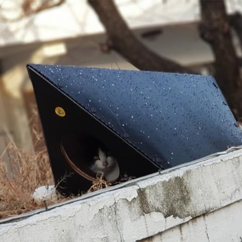 눈,비,추위 걱정 없는 겨울용 캣터_CAT-TER