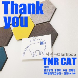 """""""도토, 힘내렴"""", 제2회 TNR  CAT 캠페인 완료"""