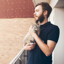이렇게 안으면 냥님이 좋아할 수도 있다, 고양이 잘 안아주는 법 5