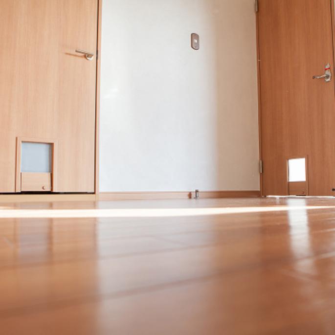 고양이도 위하는 일본의 임대아파트