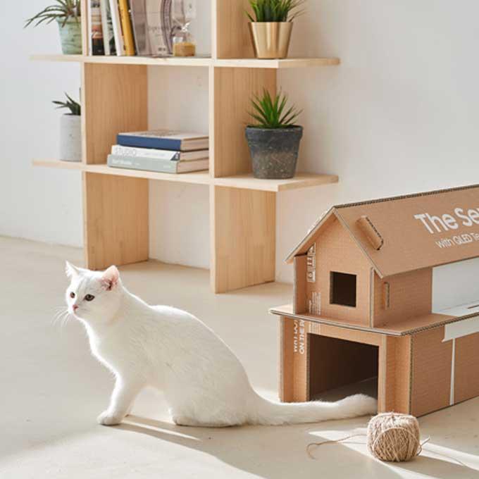 삼성 TV 사면 튼튼한 고양이 집이 덤