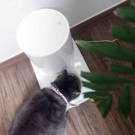 홀로 객지 생활하는 집사 마음까지 보듬은 집밥 감성의 고양이 자동급식기, 두잇 더테이블