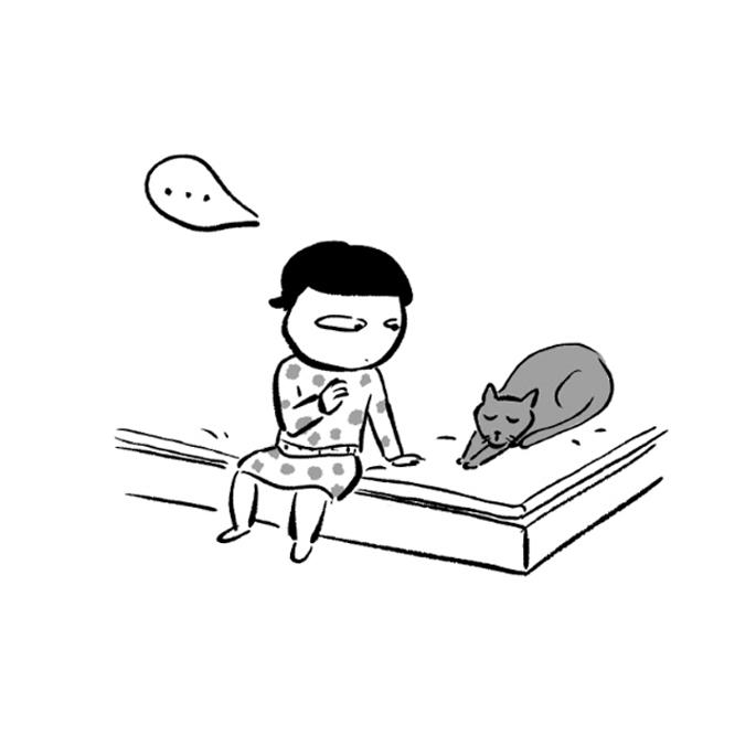 고양이사전. 제5화 나비효과