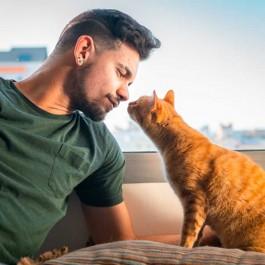 고양이가 집사한테 코 뽀뽀(코 인사) 할 때 마음 3